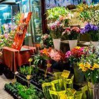 Fleuristes Haute Savoie Horaires D Ouverture Avis
